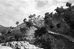 Boir Ahmad landscape by Reinhold Loeffler