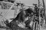 Woman weaving by Reinhold Loeffler
