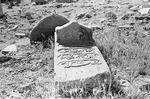 Old graves in Boir Ahmad by Reinhold Loeffler