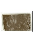 MGRRE_ThinSections_05_A_86