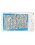 MGRRE_ThinSections_MGRRE_118_37