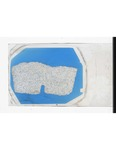 MGRRE_ThinSections_MGRRE_12_23