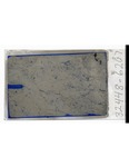 MGRRE_ThinSections_MGRRE_14_44