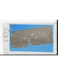 MGRRE_ThinSections_MGRRE_24_12