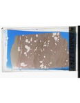 MGRRE_ThinSections_MGRRE_37_20