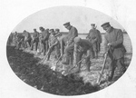 Russian POWs Turning the Soil at Stettin