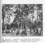 Russian POWs Cutting down Trees at Wasbek