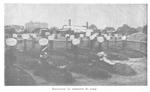 POW Cemetery at Bautzen