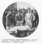 Slaughtering Pigs at Danzig