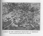 Armenian Skeletons at Erzingan